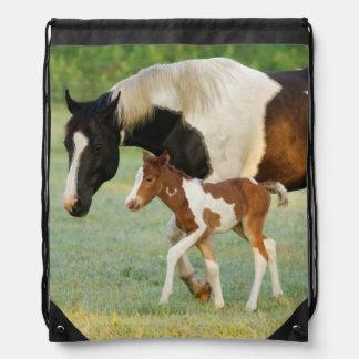 米国、フロリダの生まれたばかりのなペンキの雌の子馬 ナップサック