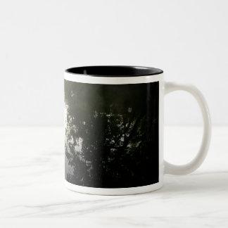 米国、フロリダのOcalaの国有林、アレキサンダー ツートーンマグカップ