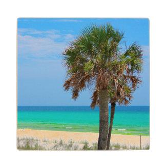 米国、フロリダ。 エメラルドの海岸のヤシの木 ウッドコースター