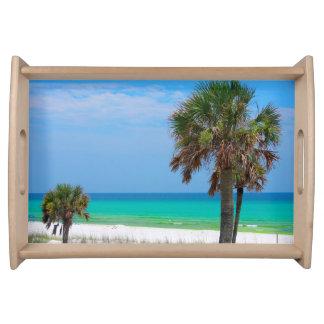 米国、フロリダ。 エメラルドの海岸のヤシの木 トレー
