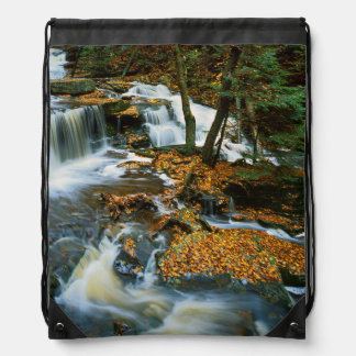 米国、ペンシルバニアのRickettsの谷間の州立公園 ナップサック