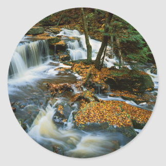 米国、ペンシルバニアのRickettsの谷間の州立公園 ラウンドシール