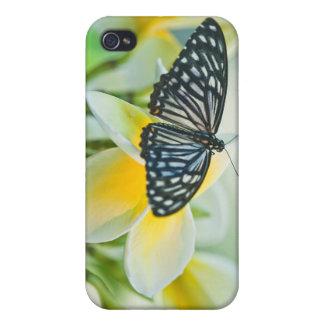 米国、ペンシルバニア。 アゲハチョウの蝶 iPhone 4/4S カバー