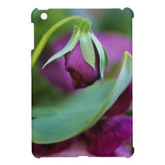 米国、ペンシルバニア。 春のつぼみの入り口 iPad MINIカバー