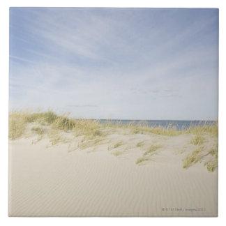 米国、マサチューセッツのケープコッド、砂Nantucket タイル