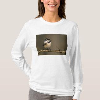 米国、ミシガン州。 とまる黒おおわれた《鳥》アメリカゴガラ Tシャツ