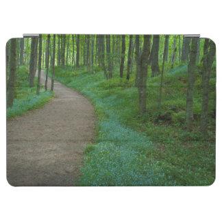 米国、ミシガン州。 抗夫の滝の道 iPad AIR カバー