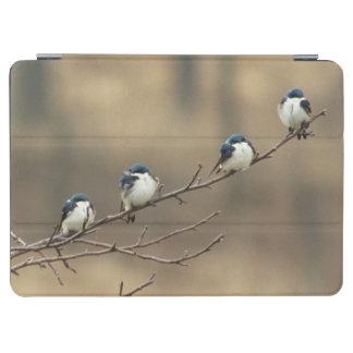 米国、ミシガン州、Shiawassee郡。 木 iPad Air カバー
