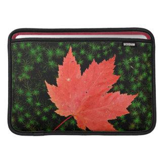 米国、ミズーリのマーク・トウェインの国有林 MacBook スリーブ