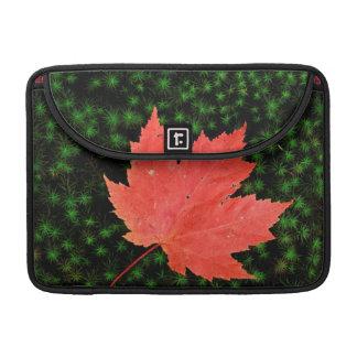 米国、ミズーリのマーク・トウェインの国有林 MacBook PROスリーブ
