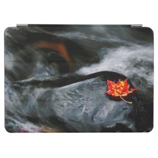 米国、メイン。 流れの黒い石のカエデの葉 iPad AIR カバー