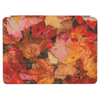 米国、メイン。 秋のかえでの葉 iPad AIR カバー
