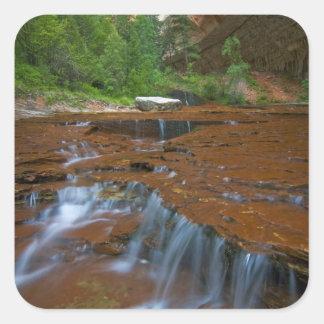 米国、ユタのザイオン国立公園。 から景色 スクエアシール