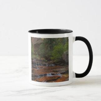 米国、ユタのザイオン国立公園。  から景色 マグカップ