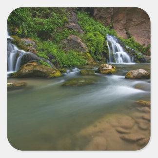 米国、ユタのザイオン国立公園。 ヴァージン スクエアシール