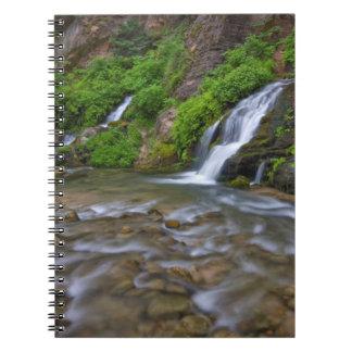 米国、ユタのザイオン国立公園。  大きい春 ノートブック