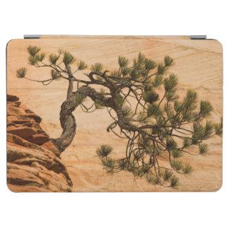 米国、ユタのザイオン国立公園。 松の木 iPad AIR カバー