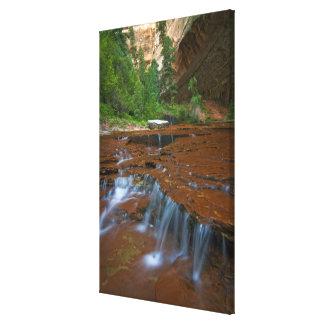 米国、ユタのザイオン国立公園。 2から景色 キャンバスプリント