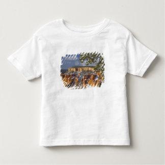 米国、ユタのブライス渓谷の国立公園。 日の出 トドラーTシャツ
