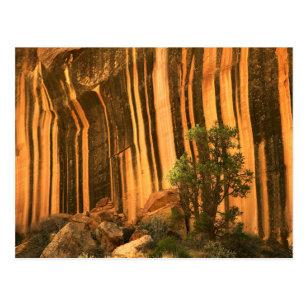 米国、ユタの国会議事堂礁の国立公園 ポストカード