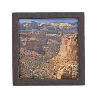 米国、ユタの赤い石の崖 ギフトボックス
