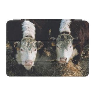 米国、ユタの隠し場所の谷、Herefordの雄牛 iPad Miniカバー