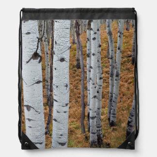 米国、ユタのUinta Wasatch隠し場所の国有林2 ナップサック