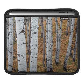 米国、ユタのUinta Wasatch隠し場所の国有林2 iPadスリーブ