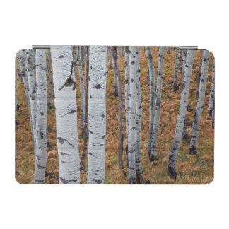 米国、ユタのUinta Wasatch隠し場所の国有林2 iPad Miniカバー