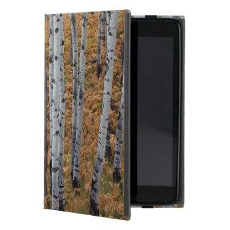 米国、ユタのUinta Wasatch隠し場所の国有林2 iPad Mini ケース