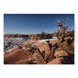 米国、ユタ、モアブ。 Canyonlandsの国立公園、 カード
