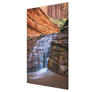 米国、ユタ、Escalanteの荒野。  滝 キャンバスプリント