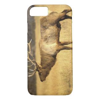 米国、ワイオミングのイエローストーン国立公園。 Bull iPhone 8/7ケース