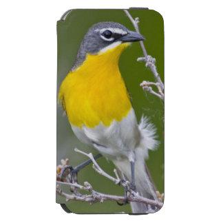 米国、ワイオミングの黄色いbreasted雑談のIcteria 2 Incipio Watson™ iPhone 6 ウォレットケース