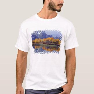 米国、ワイオミングのTetonの壮大な国立公園。 Mt. Tシャツ