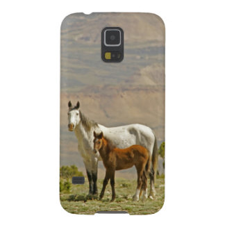 米国、ワイオミング、Carbon郡。 野生の馬のロバ Galaxy S5 ケース