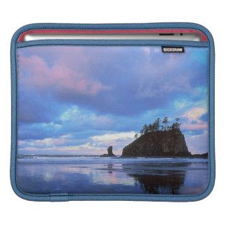 米国、ワシントン州のオリンピック国立公園2 iPadスリーブ