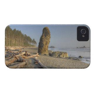 米国、ワシントン州のオリンピック国立公園、ルビー Case-Mate iPhone 4 ケース