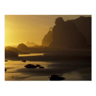 米国、ワシントン州のオリンピック国立公園、日没、 ポストカード