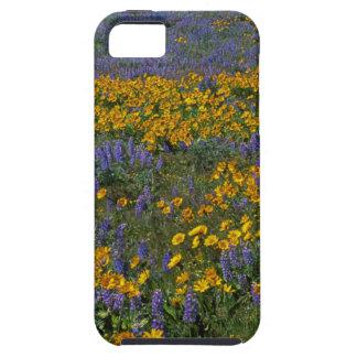 米国、ワシントン州のコロンビア川の峡谷の国民 iPhone SE/5/5s ケース