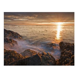 米国、ワシントン州のサンファン島。  劇的の ポストカード