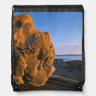 米国、ワシントン州のシャチの島、大きい石 ナップサック