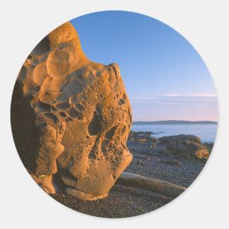 米国、ワシントン州のシャチの島、大きい石 ラウンドシール