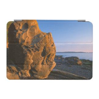米国、ワシントン州のシャチの島、大きい石 iPad MINIカバー