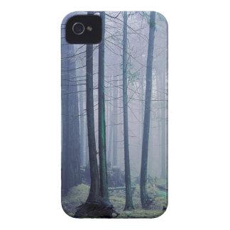 米国、ワシントン州のシャチの島、Moranの州立公園 Case-Mate iPhone 4 ケース