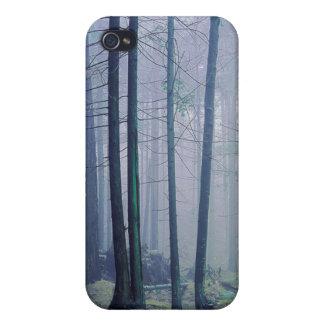 米国、ワシントン州のシャチの島、Moranの州立公園 iPhone 4 ケース