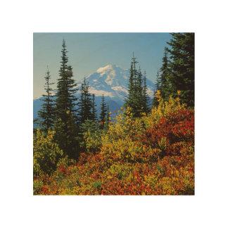 米国、ワシントン州のレーニア山国立公園2 ウッドウォールアート