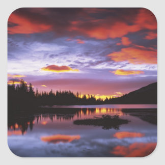 米国、ワシントン州のレーニア山国立公園、 スクエアシール