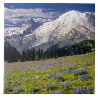 米国、ワシントン州のレーニア山国立公園 タイル