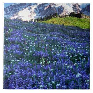 米国、ワシントン州のレーニア山国立公園。 Mt. タイル